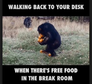 walking back to your desk when there's free food in the break room meme