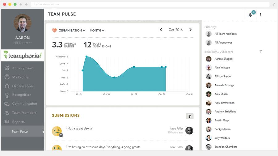 measure culture with team pulse