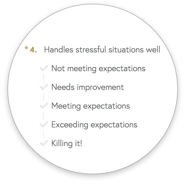 perf screen 1 -  - Teamphoria Performance Management Software